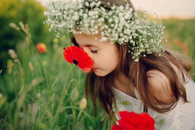 rma-primavera